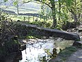Ancient Bridge at Wycoller - geograph.org.uk - 640706.jpg