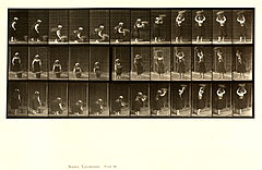 Animal locomotion. Plate 230 (Boston Public Library).jpg