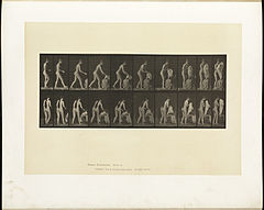 Animal locomotion. Plate 415 (Boston Public Library).jpg