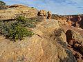 Antelope Overlook - panoramio.jpg