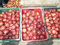Apples at Sukhi Top near GangotriWTK20150915-IMG 2695.jpg