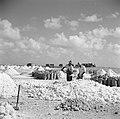 Arbeiders aan het werk in de zoutpannen van Bonaire, Bestanddeelnr 252-8402.jpg
