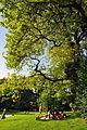 Arboretum 2011-07-31 18-21-06.jpg