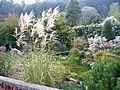 Arboretum Borotín.jpg
