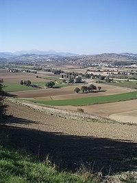 Area archeologica di Suasa - Vista dalla Croce del Termine 1.JPG