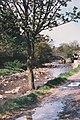 Arkle Beck, Langthwaite - geograph.org.uk - 419388.jpg
