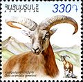 Armenian mouflon 2012 Armenian stamp.jpg