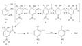 Aromatische additie-eliminatiereactie.png