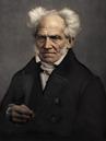 Arthur Schopenhauer colorized.png