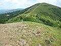 Ascending Black Hill, Malvern Hills - geograph.org.uk - 825506.jpg