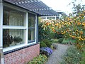 Assen, Netherlands - panoramio (6).jpg