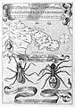Athanasius Kircher, Magnes sive de arte magn Wellcome L0028710.jpg
