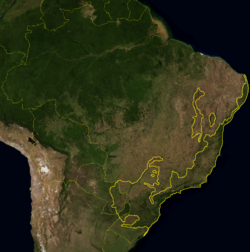 Atlantic Forest WWF.png