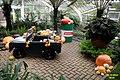 Automotive 3D still-life with pumpkins (SG) (16218630031).jpg