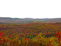 Autumn-mountain-view - West Virginia - ForestWander.jpg