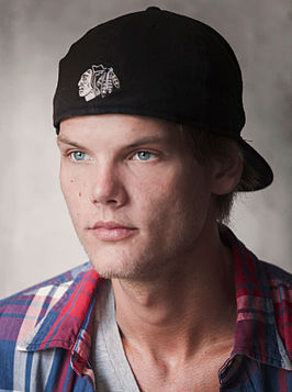Avicii in 2014