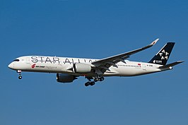 Air China toestel met Star Alliance exterieur