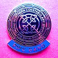 BADGE - Scotland - Northern Constabulary Pipe Band uniform lapel badge gilt (15271218652).jpg