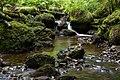 Bach Durch Den Wald (262195351).jpeg