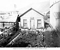 Backyard garden in Dawson, Yukon Territory, August 1909 (AL+CA 2758).jpg