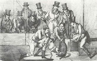 "Badger-baiting - ""Badger Baiting"" by Henry Alken circa 1824"