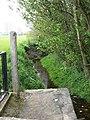 Baguley Brook in Wythenshawe Park - geograph.org.uk - 1279081.jpg
