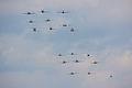 Balbo - Duxford Flying Legends July 2009 (3711617580).jpg