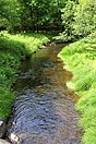 Balliet Run, a Class A Wild Trout stream