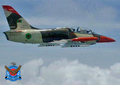 Bangladesh Air Force L-39 (10).png