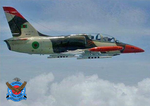 Bangladesh Air Force L-39 (10).png