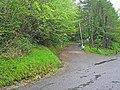 Barrier in Killykeen Forest Park - geograph.org.uk - 1303535.jpg