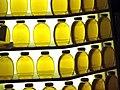 Beautiful Display of Honey at the NC State Fair.jpg