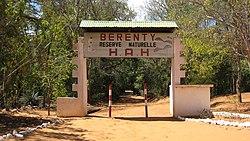 Berenty 001.jpg