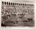 Bild från Johanna Kempes f. Wallis resa genom Spanien, Portugal och Marocko 18 Mars - 5 Juni 1895 - Hallwylska museet - 103384.tif