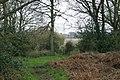Binswood bridleway - geograph.org.uk - 777071.jpg