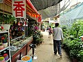 Bird and Flower Market (Kunming) - DSC03471.JPG
