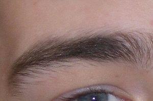 English: Eyebrow, detail of File:Konferencja W...