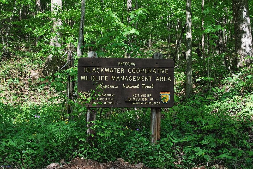 Blackwater Cooperative WMA - Entrance Sign