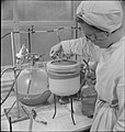Blood Drying Unit- Processing Blood in the Laboratory, Cambridge, England, UK, 1943 D16749.jpg