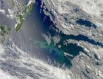 Bloom around the Chatham Islands, New Zealand.jpg