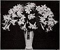 Book for florists - autumn 1942 (1942) (19772376964).jpg