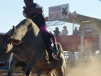 Borroloola - The Borroloola rodeo is held in August each year