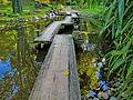 Botanička bašta Jevremovac, Beograd - Japanski vrt 13.jpg