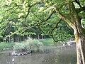 Botanical garden in Zugdidi(04).jpg