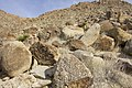 Boulder field at Rattlesnake Canyon (16557337426).jpg