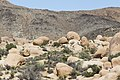 Boulders near White Tank Campground (21705518108).jpg