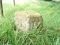 Boundary Stone - geograph.org.uk - 187621.jpg