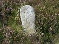Boundary Stone - geograph.org.uk - 537418.jpg