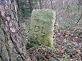 Boundary Stone DL - geograph.org.uk - 128692.jpg