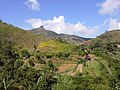 Brasil Rural - panoramio (68).jpg